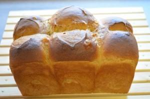 珈琲食パン