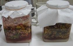 麹のフルーツ酵素